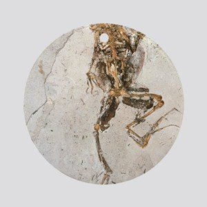 Fossilised frog embedded in rock Round Ornament