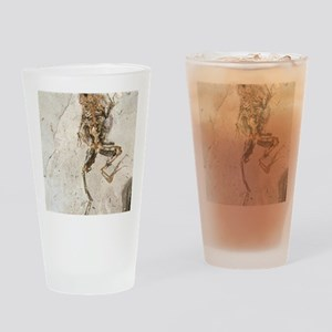 Fossilised frog embedded in rock Drinking Glass