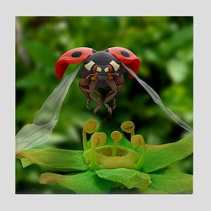 Ladybird in flight, SEM Tile Coaster