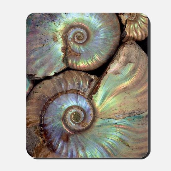 Fossilised ammonites Mousepad
