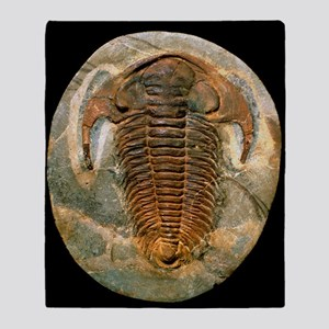 Fossil trilobite from the Cambrian p Throw Blanket