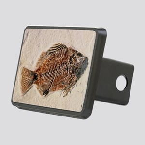 Fossilised fish, Priscacar Rectangular Hitch Cover