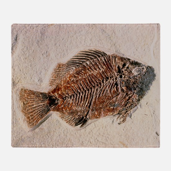 Fossilised fish, Priscacara serata Throw Blanket