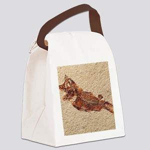 Fossilised fish Canvas Lunch Bag
