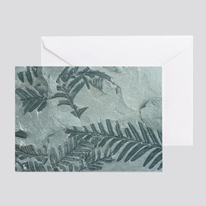 Fossil leaves of Alethorpteris lonch Greeting Card
