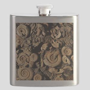 Fossilised ammonites Flask
