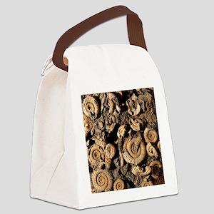Fossilised ammonites Canvas Lunch Bag