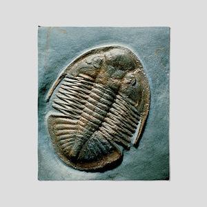 Fossil trilobite, 'Ogyginus corndens Throw Blanket