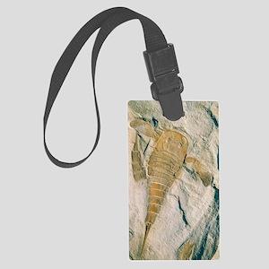 Fossil of a sea scorpion, Eurypt Large Luggage Tag