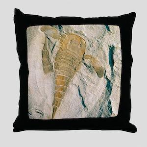 Fossil of a sea scorpion, Eurypterus  Throw Pillow