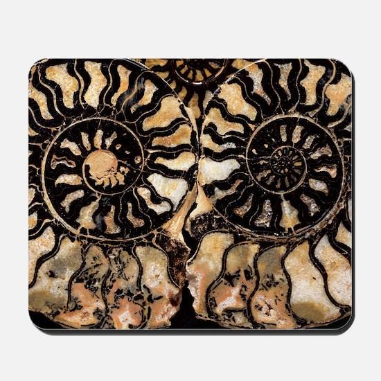 Fossil ammonites Mousepad