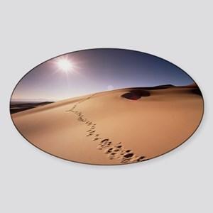 Footprints over sand dunes Sticker (Oval)