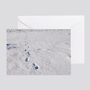 Footprints in snow Greeting Card