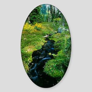 Forest stream Sticker (Oval)