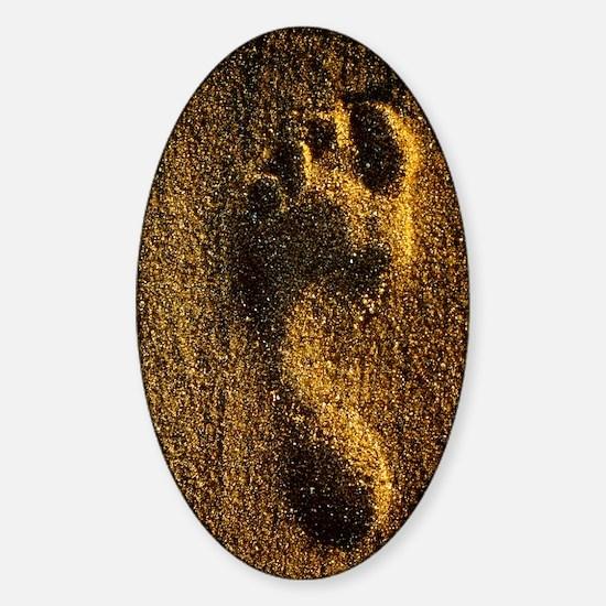 Footprint in sand Sticker (Oval)
