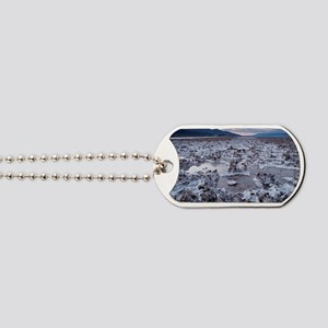 Flooded salt flat Dog Tags