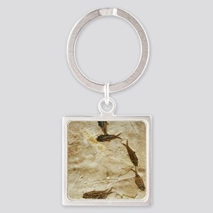 Fish fossils Square Keychain