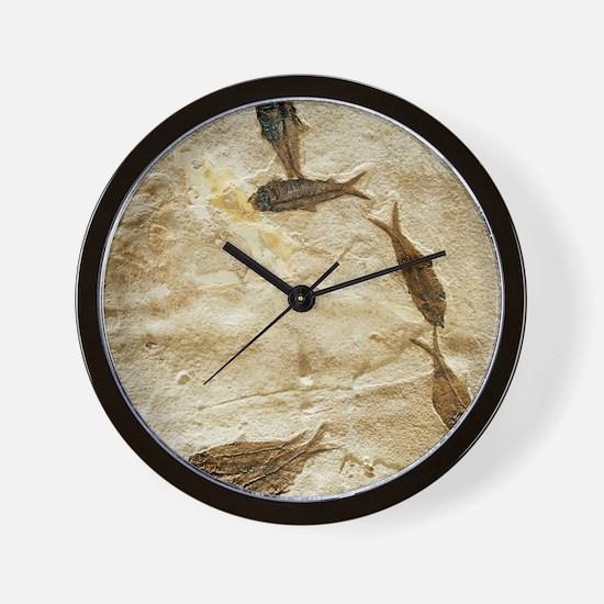 Fish fossils Wall Clock
