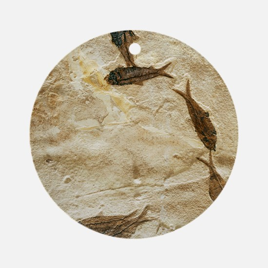 Fish fossils Round Ornament