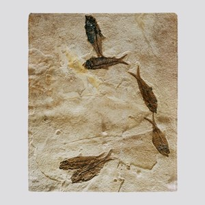 Fish fossils Throw Blanket