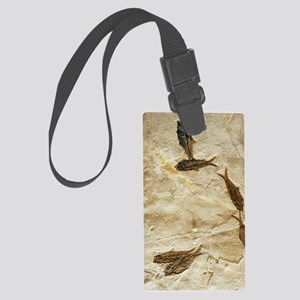 Fish fossils Large Luggage Tag