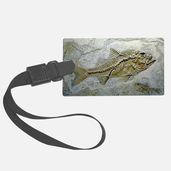 Fish fossil Luggage Tag
