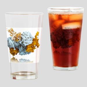 Influenza nucleoprotein, molecular  Drinking Glass