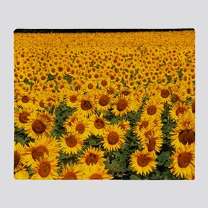 Field of sunflowers, France Throw Blanket
