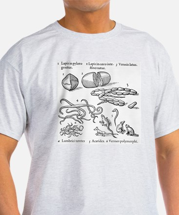 Human parasites, historical artwork T-Shirt