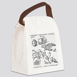 Human parasites, historical artwo Canvas Lunch Bag