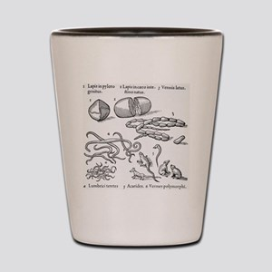 Human parasites, historical artwork Shot Glass