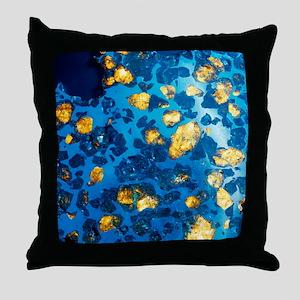 Imilac meteorite sample Throw Pillow