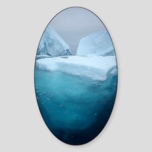 Iceberg Sticker (Oval)
