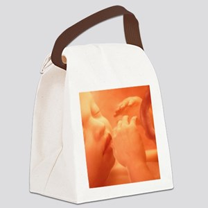 Human foetus in the womb, artwork Canvas Lunch Bag