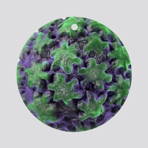 Human papilloma virus particle, art Round Ornament