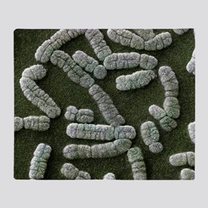 Human chromosomes SEM Throw Blanket