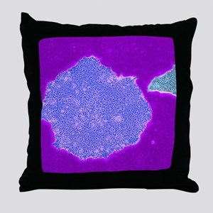 Human embryonic stem cells, TEM Throw Pillow