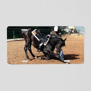 Horse training Aluminum License Plate