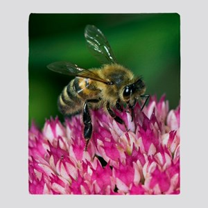 Honey bee feeding on Sedum flowers Throw Blanket