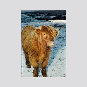 Highland cow in winter Rectangle Magnet