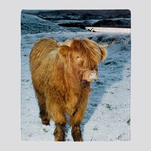Highland cow in winter Throw Blanket