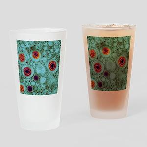 Herpes virus, TEM Drinking Glass