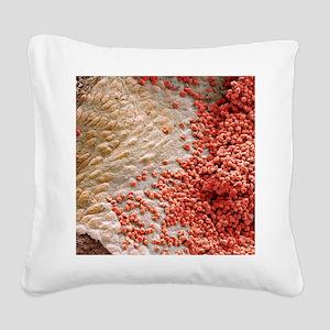 Heart ventricle, SEM Square Canvas Pillow