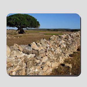 Dry stone wall Mousepad