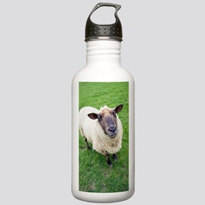 Domestic sheep Stainless Water Bottle 1.0L