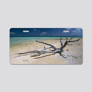 Driftwood on a tropical bea Aluminum License Plate