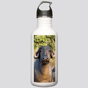 Domestic Asian water b Stainless Water Bottle 1.0L