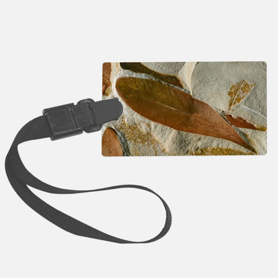 Glossopteris leaf fossils Luggage Tag