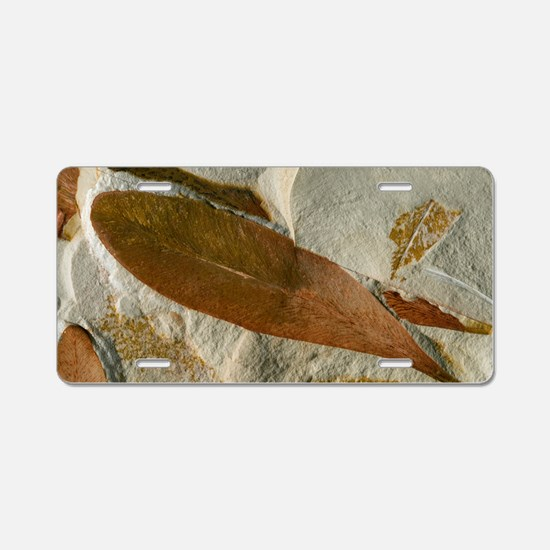 Glossopteris leaf fossils Aluminum License Plate