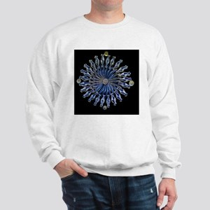 Diatoms, light micrograph Sweatshirt
